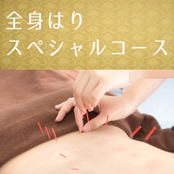 国家資格を持つスペシャリストによる全身はり治療(60分)【東京都】