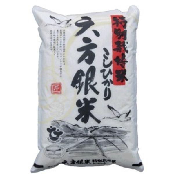 【平成30年産新米予約】コウノトリ舞い降りるコシヒカリ 六方銀米( 5kg7分づき×4)