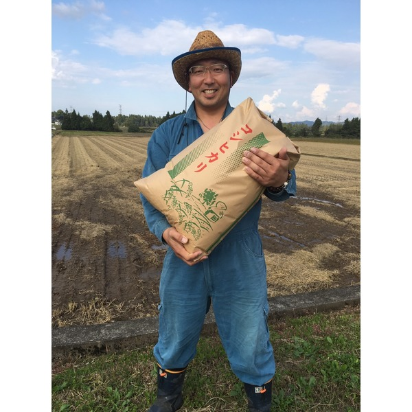 <限定10袋>直藩栽培米 魚沼産 H30年度産 玄米30キロ