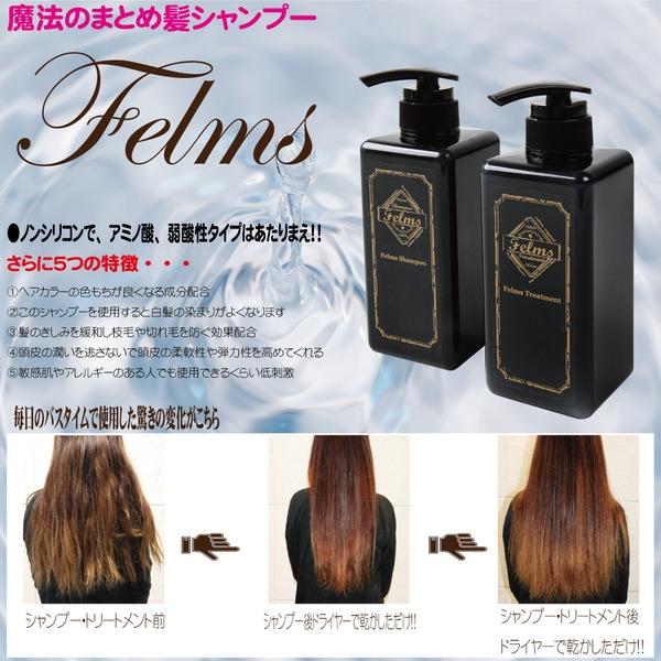 【魔法のまとめ髪シャンプー】 Felmsシャンプー 香り アップル
