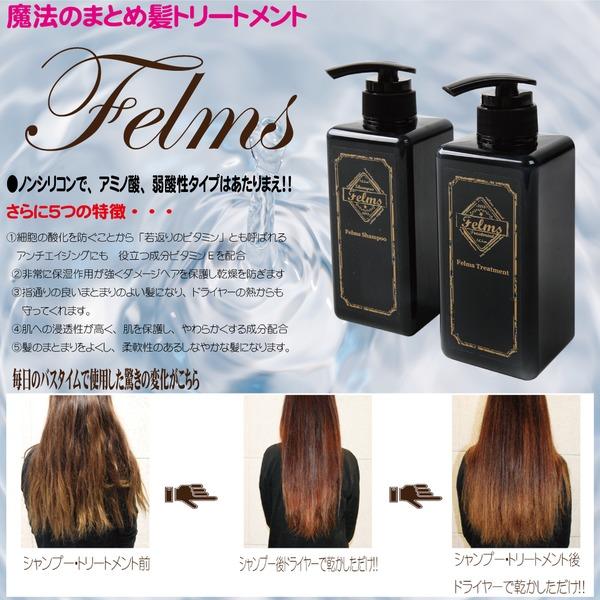 【魔法のまとめ髪シャンプー】 Felmsトリートメント 香り アップル