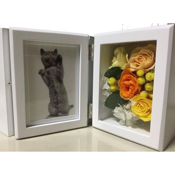 「ブリザード花と写真立て」黄
