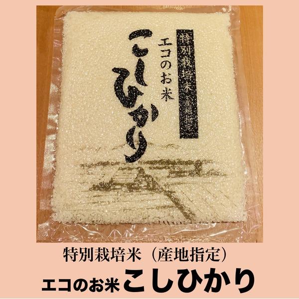 【エコのお米】こしひかり〜特別栽培米 (産地指定)〜