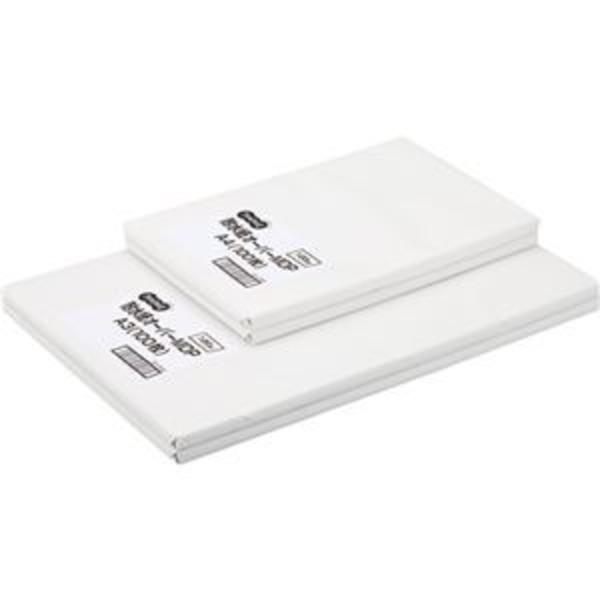 (まとめ) TANOSEE 耐水紙オーパーMDP F12 A4 1冊(100枚) 【×2セット】
