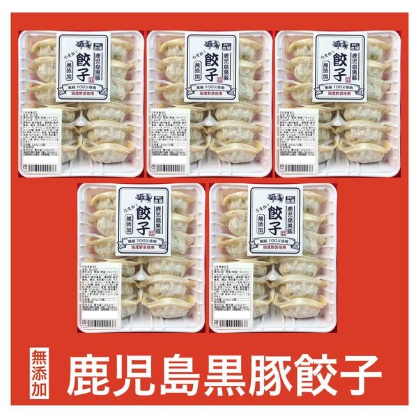 無添加 鹿児島黒豚生餃子 冷凍5パックセット