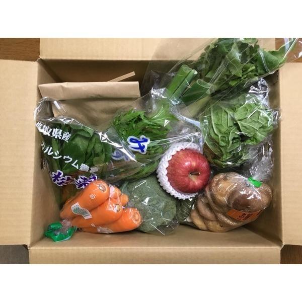 米(新米)入り季節の野菜箱