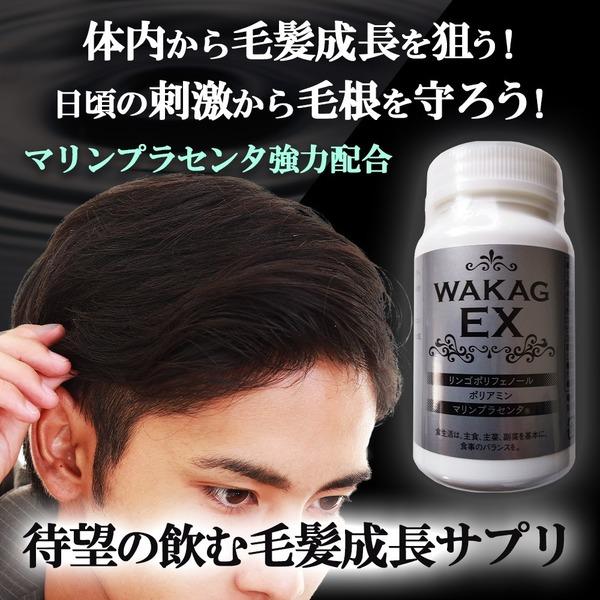 ボリュームアップサプリメントWAKAG EX