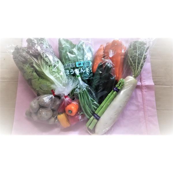 九州産 有機肥料無化学肥料 お野菜セット 9品